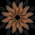 Fantasy flower shape with 3d effect. Orange star shape on black background. Vector in fractal style. Royalty Free Stock Photo