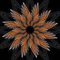 Fantasy Flower Shape With 3d E...