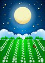 Fantasy landscape with full moon and fiel of flowers, paper art