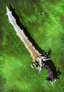 Fantasy magic sword Stock Images