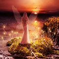 Fantasy magic world pixie and sunset fairy with transparent wings standing on green island in lake watching the Stock Photo