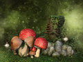 Fantasy mushrooms, rocks and ivy Royalty Free Stock Photo