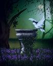 Fantasy scene with dove
