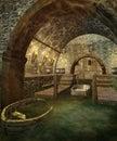 Fantasy vault 1 Royalty Free Stock Photo