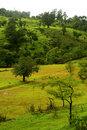Farbfilm-Landschaft Stockfotos