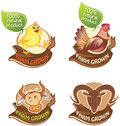 Farm animal banners set of domestic Stock Photography