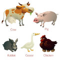 Farm animal color text Royalty Free Stock Photo