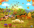 Farm animals in the autumn field vector illustration of scene with and crop Royalty Free Stock Photo