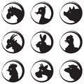 Farm animals birds vector silhouette icon set vector illustration Stock Images