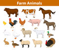 Farm animals collection Royalty Free Stock Photo