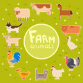 Farm animals in the green field Royalty Free Stock Photo