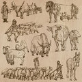 Farm animals hand drawn vector pack around the world part collection of an illustrations each drawing comprise of two or three Royalty Free Stock Images
