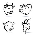 Farm animals icons set isolated Stock Images