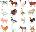 Farm animals photo realistic set Royalty Free Stock Image