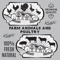 Farm animals and poultry on background with Royalty Free Stock Images