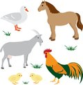 Farm animals set 2 Stock Photo