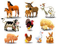 Farm animals and their babies Royalty Free Stock Photo