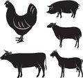 Farm animals vector set of chicken cow sheep goat pig Royalty Free Stock Photography