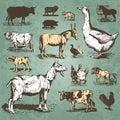 Zvířata starodávný sada (vektor)
