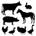 Farm, farmyard animals vector silhouettes Royalty Free Stock Photo