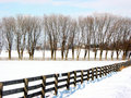 Farm fence and trees Royalty Free Stock Photo