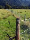 Farm fences new zealand separating lush green fields paddocks Royalty Free Stock Images