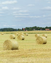 Farm Field Royalty Free Stock Photography