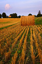 Farm field at dusk Royalty Free Stock Photography