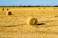Farm field with hay bales Royalty Free Stock Photo