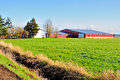 Farm field in spring time delta bc Royalty Free Stock Image