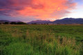 Farm field sunset  image in rural Utah, USA. Royalty Free Stock Photo