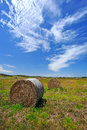 Farm Field In West Australia Royalty Free Stock Images