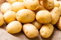 Farm fresh  potatoes on a hessian sack Royalty Free Stock Photo
