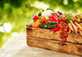 Farm fresh vegetables in a wooden crate