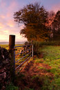 Farm Gate at Sunrise Stock Photo