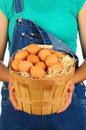 Farm Girl with Basket of Eggs Royalty Free Stock Photo