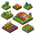 Farm at harvest time vegetable garden and agriculture in isometry paddock vegetables truck forest vector flat illustration Royalty Free Stock Image