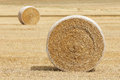 Farm hay harvest rolls of golden in field horizontal format Stock Photography
