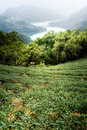 Farm on hill Royalty Free Stock Image