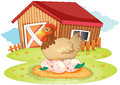 Farm house and hen Royalty Free Stock Photo