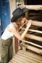 Farm lady looking into a sheep cage Royalty Free Stock Photos