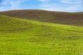 Farm land and blue sky green wheat fields Royalty Free Stock Photos