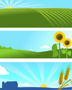 Farm nature landscape banner web for or agriculture add your logo Stock Photography