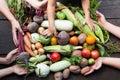 Farm organic nutrient concept, ripe raw vegetables Royalty Free Stock Photo
