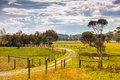 Farm property in australia farmland the outer leongatha district victoria Royalty Free Stock Image
