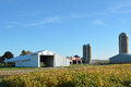 Farm site with a blue sky and soybean field Royalty Free Stock Photography