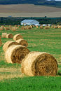 Farm with straw piles Stock Photography