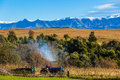 Farm tractor driver work mountain landscape colors and with trailer drives out for the days with the fields and distant trees in Stock Photography
