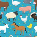 Farm vector animals domestic characters cow, chicken, pig, Royalty Free Stock Photo