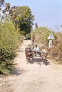 Bullock cart dirt track farm produce Royalty Free Stock Photo